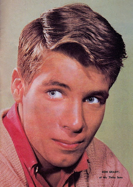 don grady from my three sons
